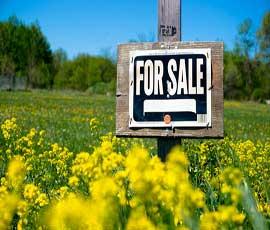 ایجاد وبسایت برای بازاریابی و فروش محصولات