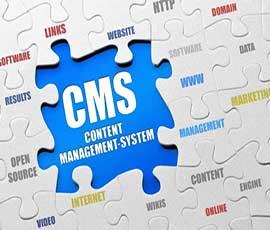 CMS یا سیستم مدیریت محتوا چیست و آیا کسب و کار ما به آن احتیاج دارد؟